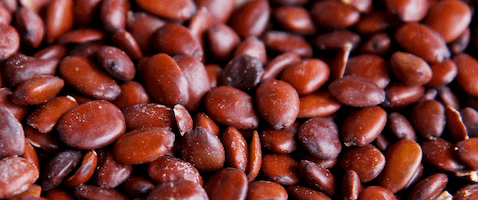 carob seeds